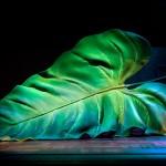 Escenografia de Max Glaenzel per a Alícia. Un viatge al país de les meravelles. Teatre Llire, 2009
